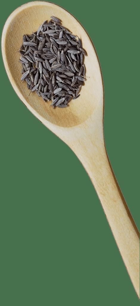 Cuillère bois plateaux repas
