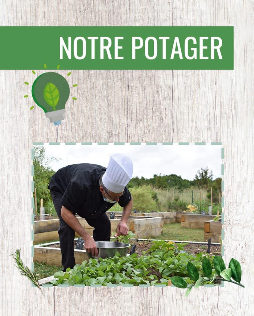 hero-page-eco-potager-version-mobile-juin